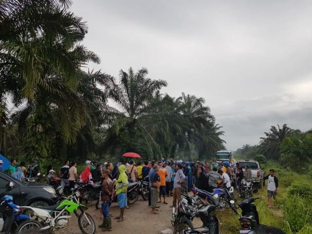 Masyarakat menyaksikan eksekusi di lahan PSJ, oleh DLHK Riau sesuai keputusan MA.