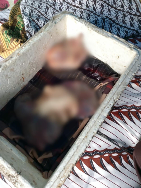 Bagian dalam tubuh korban ditemukan.