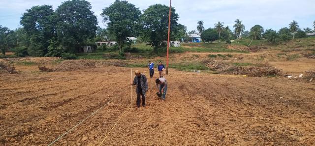 Penanaman jagung hibrida di atas lahan seluas 50 X 100 meter di Desa Lirik Area Kecamatan Lirik.