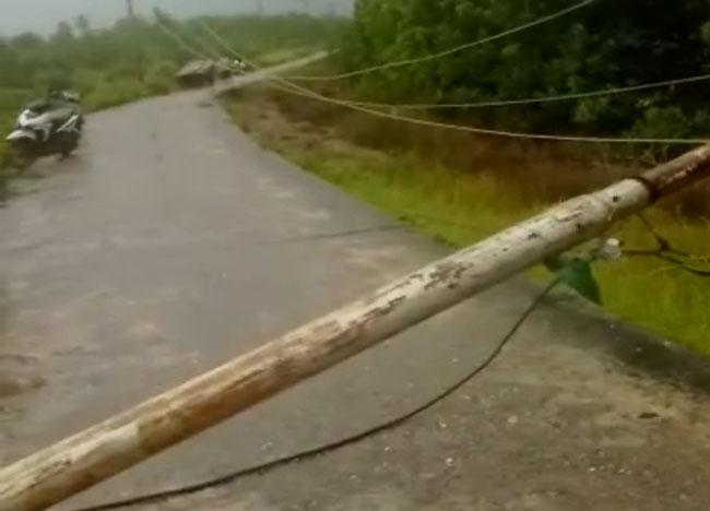 Tampak tiang listrik yang berada di Jalan Penghijauan, Desa Tanjung Pisang, Kecamatan Tasik Putripuyu, Meranti tumbang, sejak Rabu (11/12/2019) sekira pukul 10.00 WIB.
