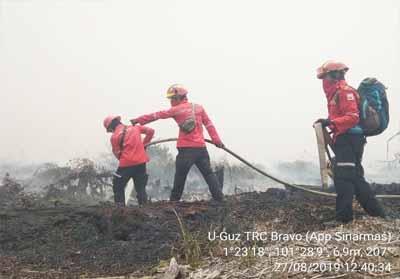 Petugas berjibaku padamkan api akibat Karhutla di Desa Bukit Kerikil.