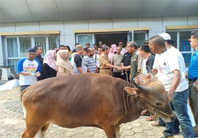 Gubri menyerahkan seekor sapi hewan kurban ke PWI Riau.