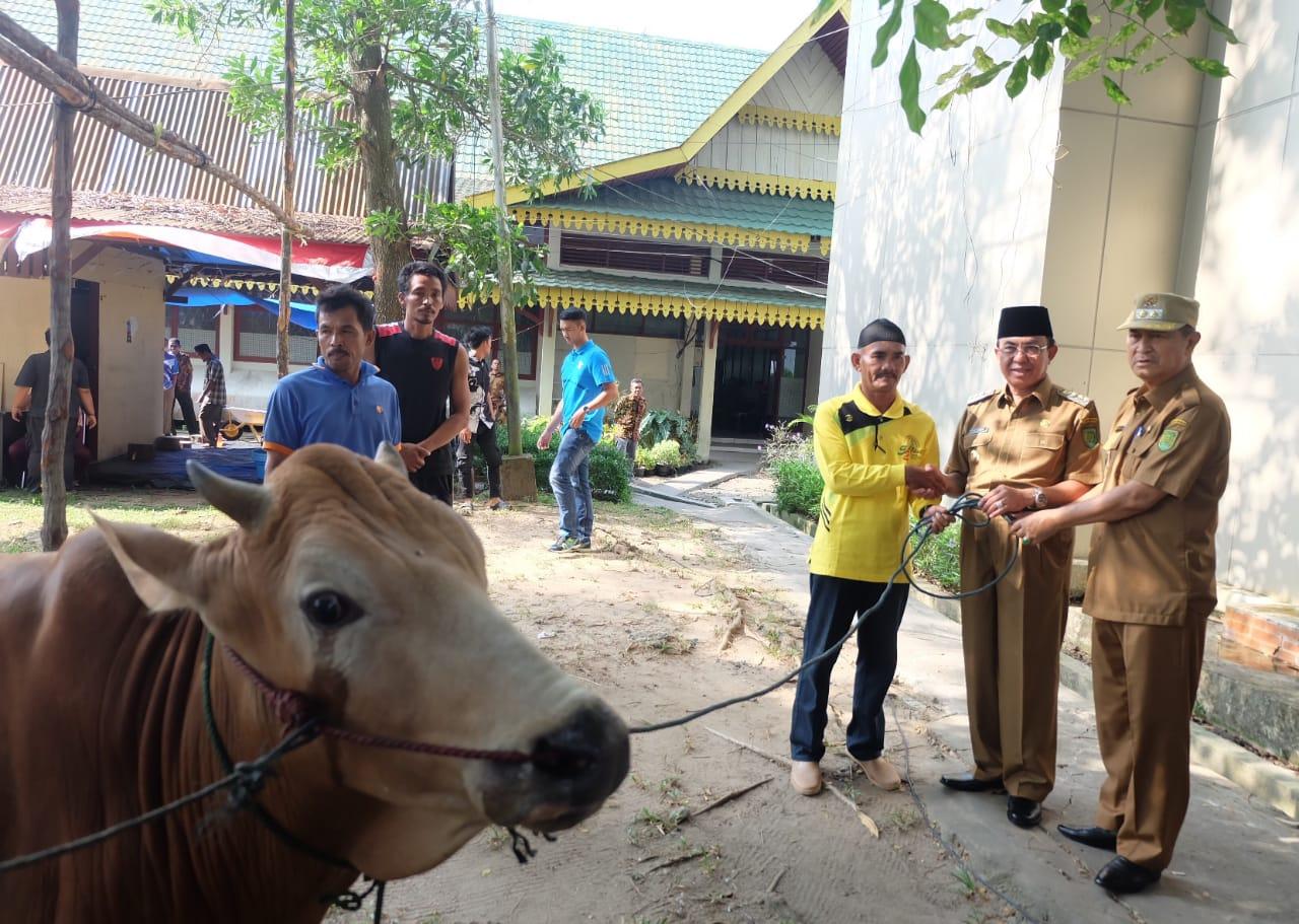 Bupati Wardan berkurban di lingkungan Sekretariat Daerah Kabupaten Inhil