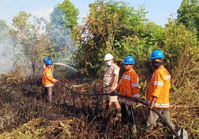 Satgas PT Inti Indosawit melakukan pemadaman di Desa Sering Kecamatan Pelalawan.