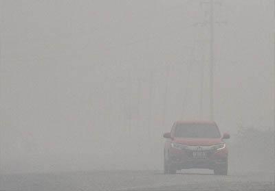 Kabut asap di Pelalawan, Riau. FOTO: Antara