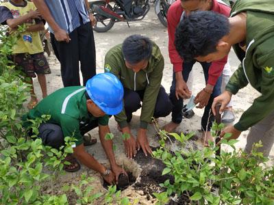 Penanaman 1.000 bibit pohon di Kampung Pangkalan Pisang.