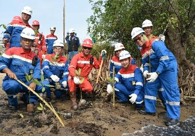 General Manager Pertamina RU II M. Dharmariza tanam Mangrove memperingati hari habitat 2019 diSentra Mangrove, Area 10 Kilang RU II Dumai, Minggu (6/10/2019).