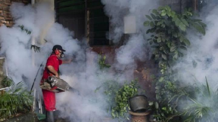 Ilustrasi: fogging di sebuah pemukiman.