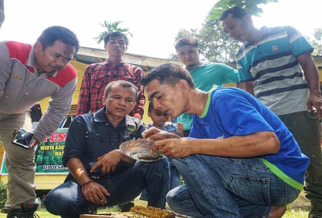 Para peserta belajar bagaimana beternak hingga memanen madu kelulut di Kampung Lalang, Sungai Apit, Siak.