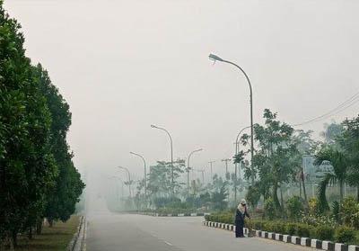 Kabut asap Pelalawan beberapa waktu lalu.