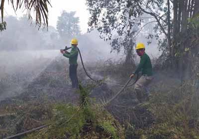 RPK PT SPA berjibaku padamkan api di hutan desa yang berbatasan antara Desa Serapung Kecamatan Kuala Kampar dan Desa Pulau Muda Kecamatan Teluk Meranti Kabupaten Pelalawan.