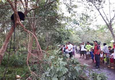 Seekor beruang madu terkena jerat warga diamankan lalu kembali dilepasliarkan.