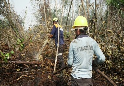 Tim tanggap darurat kebakaran lahan PT KTU berjibaku padamkan api.