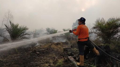 Relawam RZ ikut memadamkan api Karhutla.