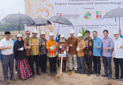 Penanaman kembali (replanting) perdana program peremajaan kebun kelapa sawit di kebun plasma anggota KUD Makmur Lestari di Desa Kenantan, Kecamatan Tapung, Kabupaten Kampar.
