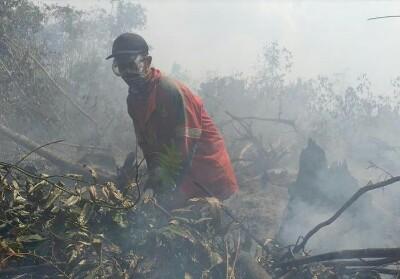 Petugas berusaha memadamkan kebakaran lahan di Siak.