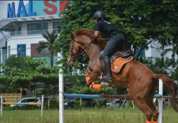 Horse Power Tambusai.