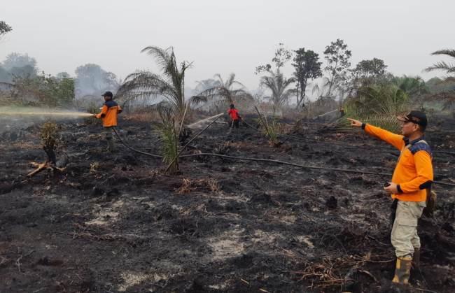 Kabid Kedaruratan BPBD Riau, Jim Gafur berada di lokasi pemadaman