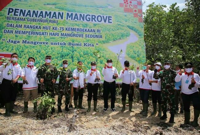 Dumai tuan rumah peringatan hari mangrove sedunia tingkat Provinsi Riau tahun 2020.