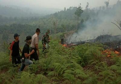 Polsek Kuntan Mudik bersama anggota Koramil padamkan kebakaran dihutan lindung Bukit Betabuh dengan peralatan seadanya.