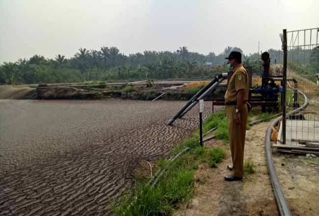 Kadis DLH Rohil, Suwandi S Sos melihat kolam PT PKS BBS beberapa waktu lalu.