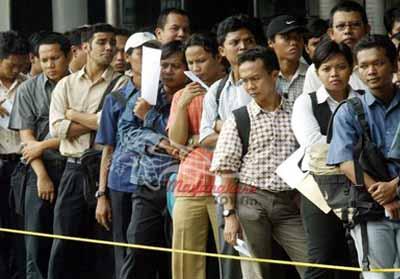 Ilustrasi: pencari kerja.