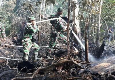 TNI bantu padamkan kebakaran lahan di Riau.