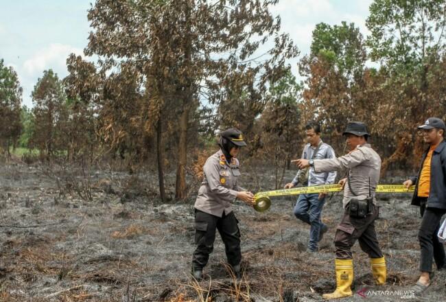 Kapolsek Rumbai Iptu Viola (kiri) bersama unit Reskrim memasang garis polisi usai melakukan pemadaman di lokasi kebakaran lahan di Pekanbaru, Riau, Kamis (27/2/2020). Foto: Antara