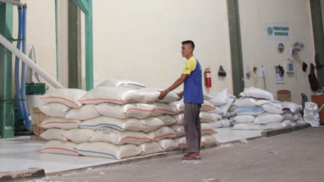 PT Kliring Berjangka Indonesia (Persero) sebagai Pusat Registrasi Resi Gudang menyebutkan, di tahun 2019 pemanfaatan SRG untuk komoditas Gabah mencapai 289 RG dengan volume 5.208.427 Kg.
