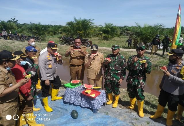 Panen raya semangka dan padi di Kepenghuluan Rokan Baru, Kecamatan Pekaitan.