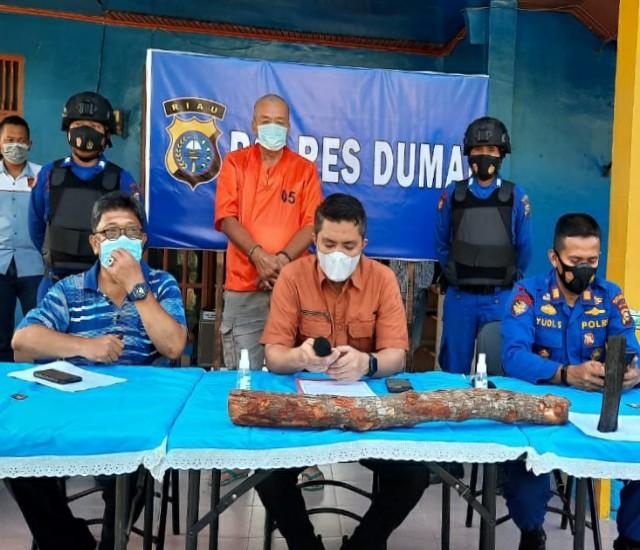 Kasat Reskrim Polres Dumai, AKP Fajri memberikan keterangan pers terkait penangkapan tersangka pengangkut kayu hasil hutan tanpa izin, Sabtu(10/4/2021).