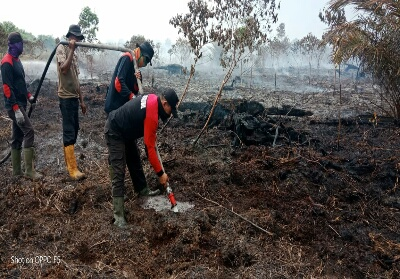 Pendinginan yang dilakukan pada lahan yang terbakar.
