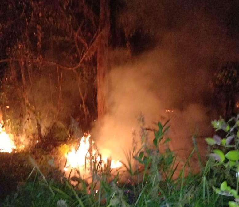 Lahan yang terbakar diduga berada di Hutan Lindung Bukit Betabuh.