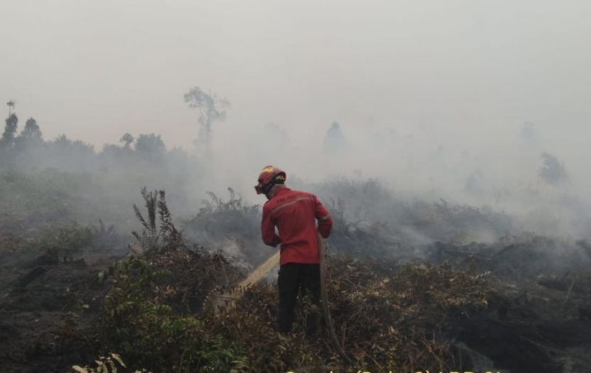 Karhutla Riau.