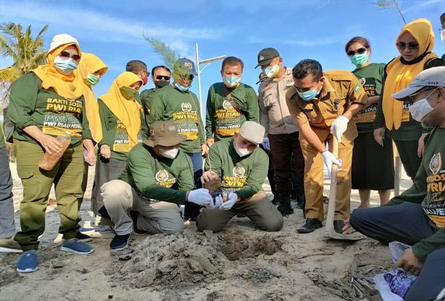 Go green di tepi bibir pantai Pulau Rupat.