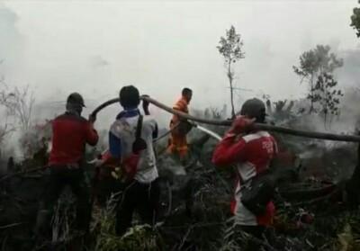 Tim Manggala Agni Daops Rengat melakukan pemadaman karhutla di Desa Penarikan, Kecamatan Langgam, Kabupaten Pelalawan, Riau, Senin (29/7/2019).