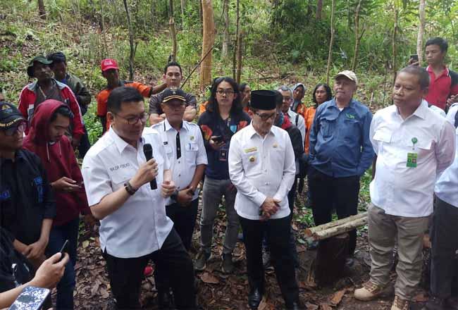 Kepala BRG Nazir Foead didampingi Walikota Dumai Drs H Zulkifli AS MSi memantau lokasi budidaya lebah kelulud yang dipusatkan di hutan wisata sungai Dumai, Rabu (9/10/2019).