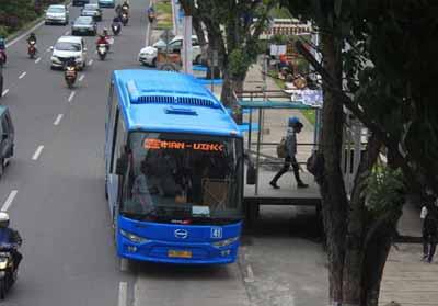 Bus TMP.
