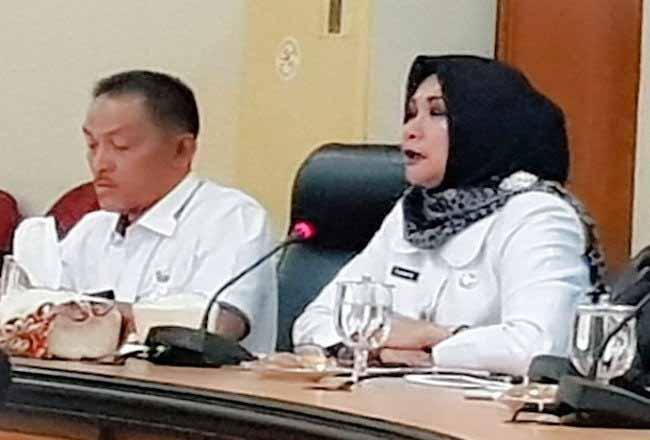 Kepala Dinas Penanaman Modal dan Pelayanan Terpadu Satu Pintu (DPMPTSP) Riau, Evarefita pada pemaparan realisasi investasi Riau 2019, di Kota Pekanbaru, Rabu (5/2/2020). Foto: Antara