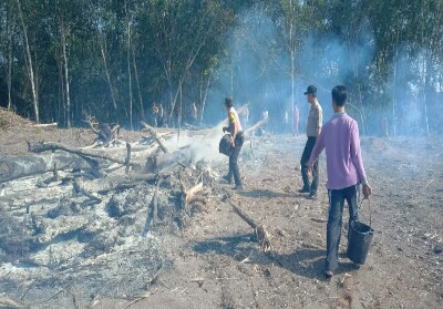 Api di lahan perkebunan yang terbakar berhasil dipadamkn.