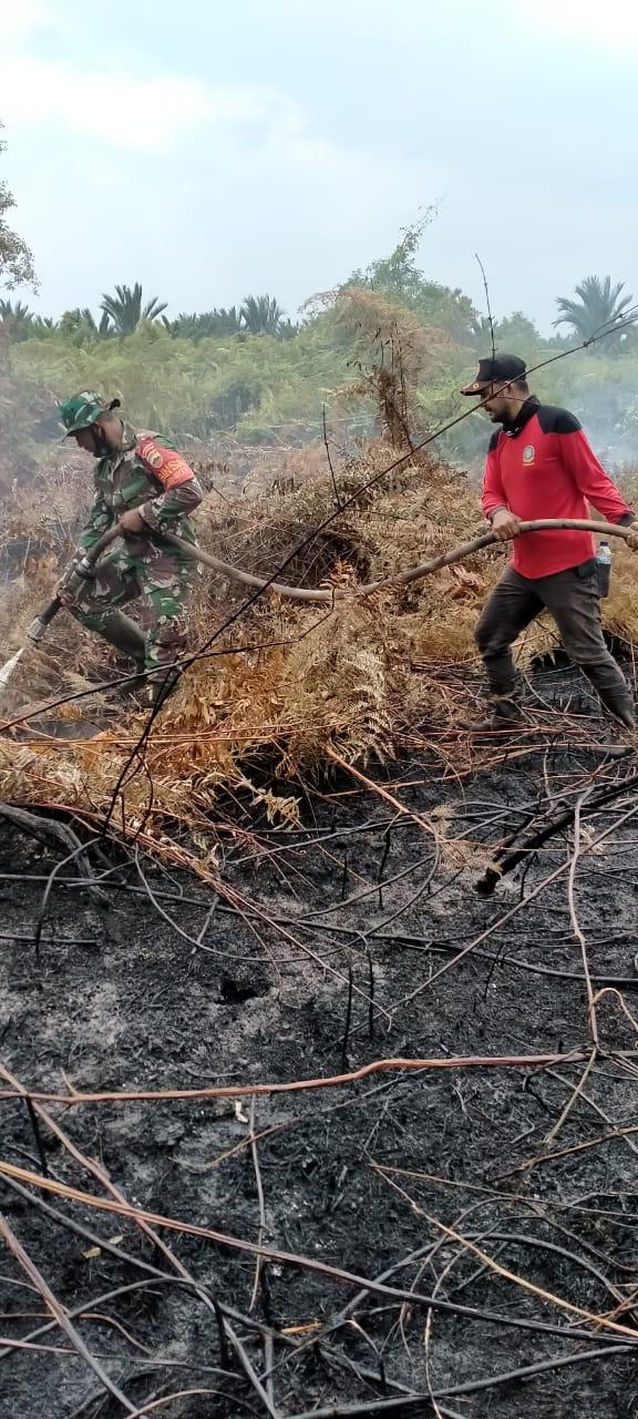 Petugas saat melakukan pendinginan di.laahn bekas terbakar di Desa Tanjung Peranap
