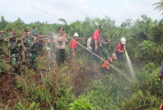 Suasana simulasi Karhutla Parit Minang Kecamatan Tempuling.