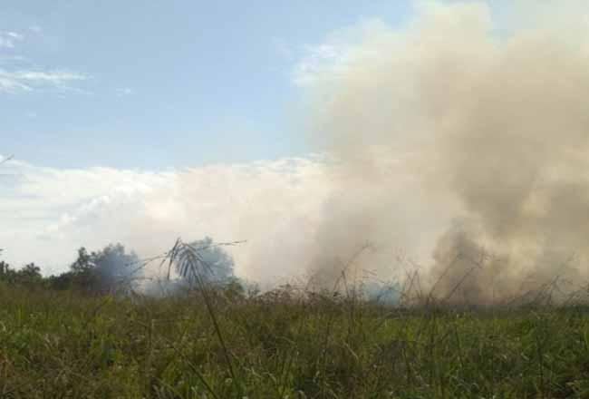 Lahan kosong milik Pertamina Patra Niaga terbakar.