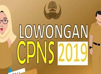 CPNS SMA 2019.