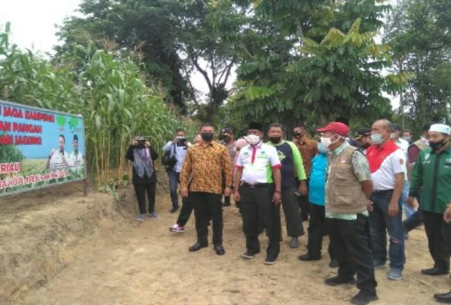 Kapolda Riau Irjen Pol Agung Setya Imam Effendi melakukan panen jagung di kawasan Agrowisata RA Kopi Aren, Sabtu (24/10/2020).