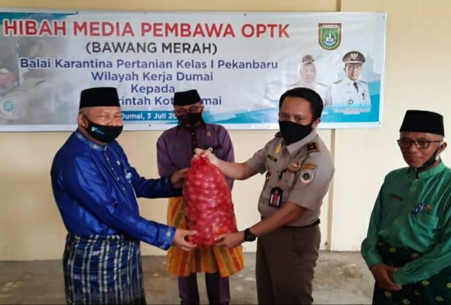 Pemko Dumai terima hibah bawang merah dari BKP Kelas I Pekanbaru wilayah kerja Dumai.