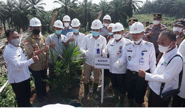 Sinar Mas Agribusiness and Food melalui anak usahanya PT Kresna Duta Agroindo melaksanakan replanting perdana program peremajaan kebun kelapa sawit di Jambi.