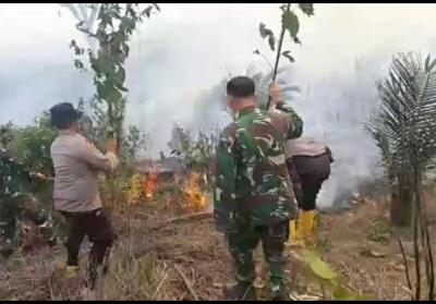 Kebakaran lahan di daerah perbatasan Riau - Sumbar. Terlihat Polsek bersama TNI padamkan api dengan pelepah pohon.