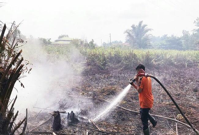 Lahan terbakar di dekat perumahan warga, daerah Tampan, Pekanbaru. Foto: Riaupos