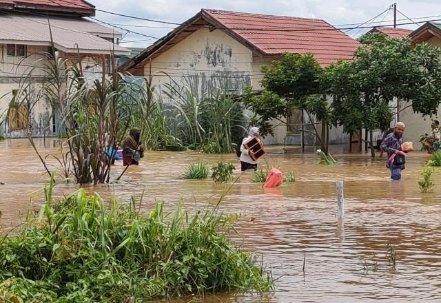 Kepala BPBD Pekanbaru tinjau banjir.